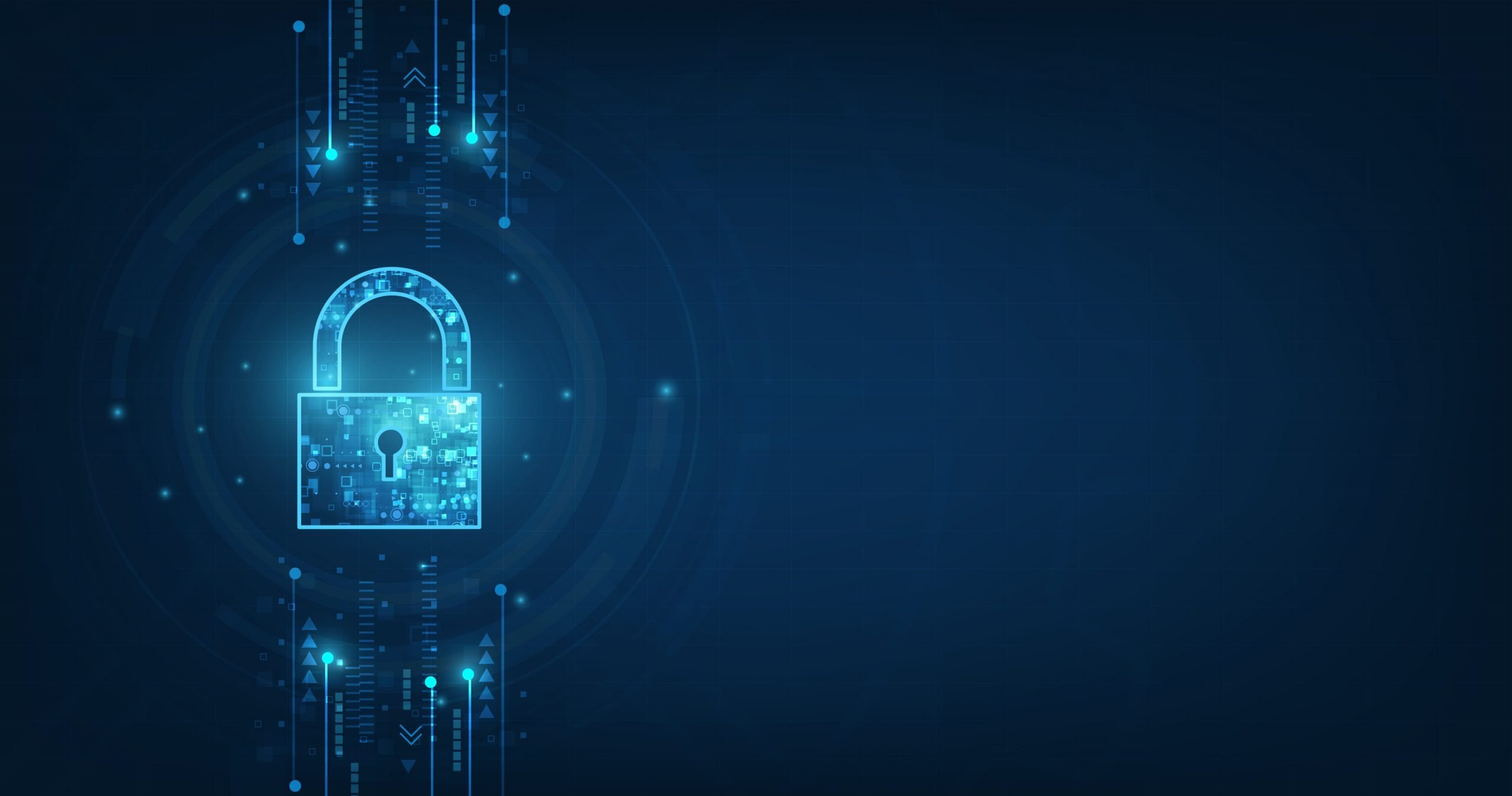 IT Security: 8 reasons to secure your business